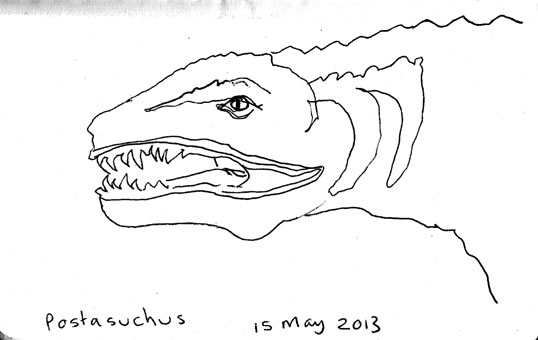 A pen sketch of our local Postosuchus