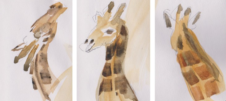 Look at me, look at me, giraffe, watercolour and pencil, 9 January 2105