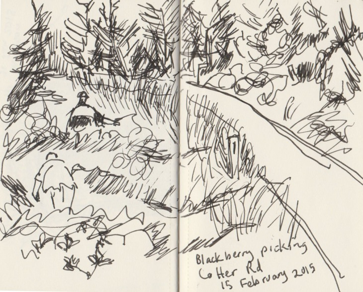 In amongst the blackberries, 15 February 2015, pen and ink