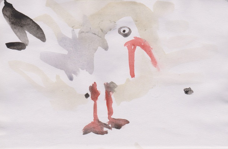 Screeching gull, watercolour, 27 February 2015