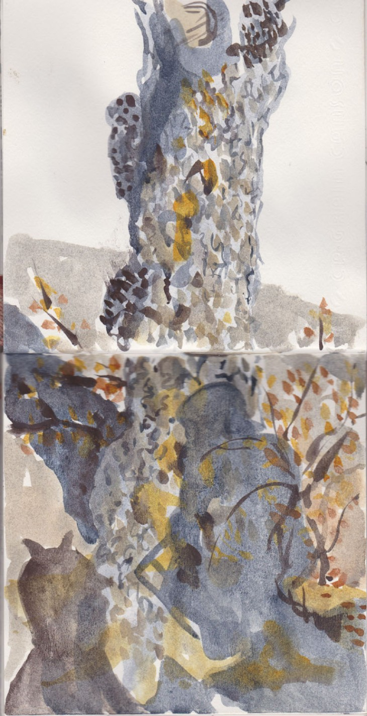 Tree with cast shadows, watercolour, 25 June 2015