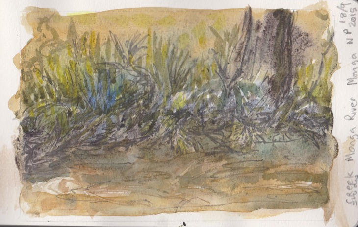 Bank of the Mongarlowe River, Monga National Park, graphite and watercolour, 18 September 2015