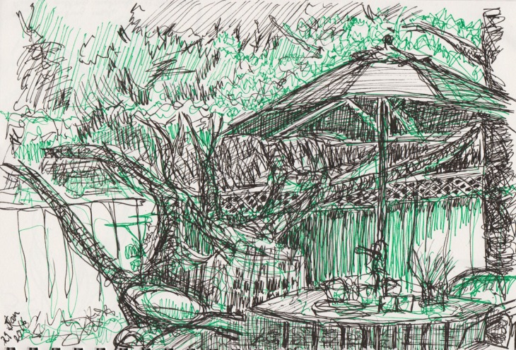 Backyard, green fineline pen and ink, 29 January 2016