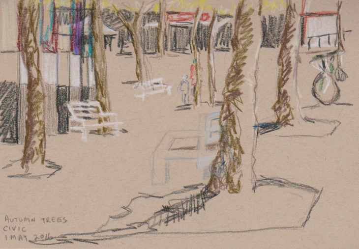 Plane trees, City Walk, coloured pencil on Strathmore toned-tan paper, 1 May 2016