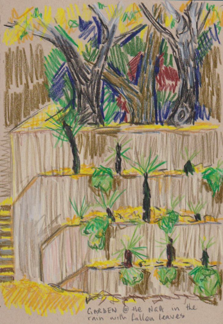 Garden at the National Gallery of Australia, coloured pencil on toned tan paper, 9 May 2016